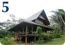 Fiche habitat 5